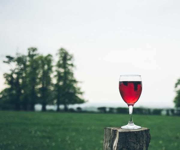 Finding guidance and support from an alcohol and drug lawyer